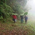 山中的環保雨傘